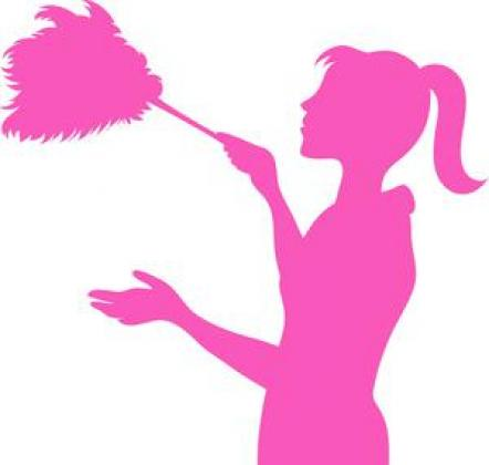 Pink Pride (maintenance/ repairs/cleaning service)