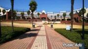 LSI college