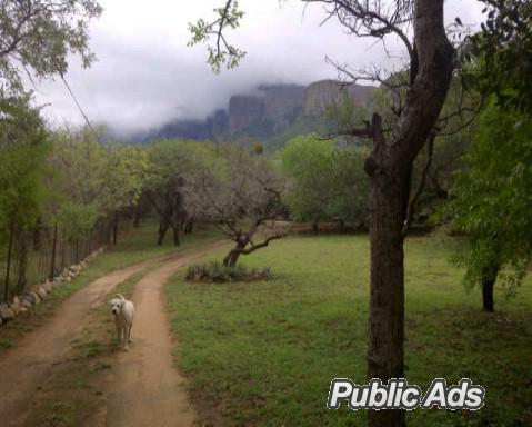 amazing grace hoedspruit, kampersrus, kruger park, on slope of edge of drakensburg to kruger