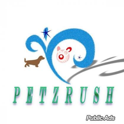PetzRush Pet Relocation