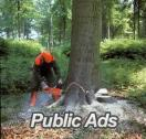 DYNAMIC TREE FELLING