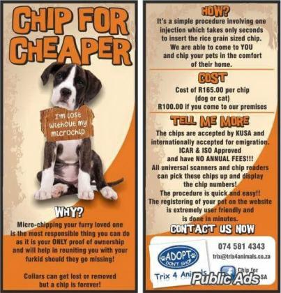 Chip your pets for Cheaper in Pretoria-Tshwane, Gauteng