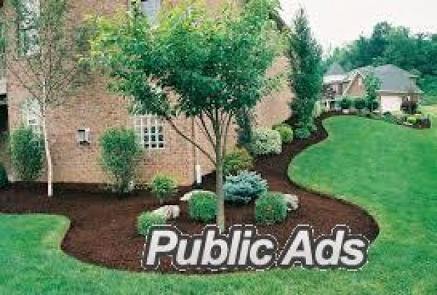 DYNAMIC TREEFELLING AND LANDSCAPING
