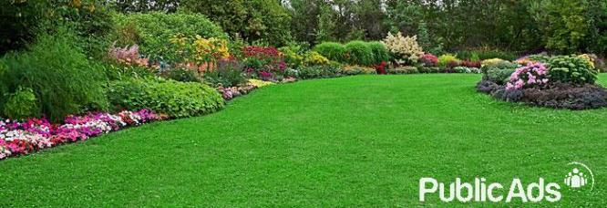 Garden Solutions - Douglasdale & Surrounds