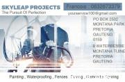 Skyleap Projects