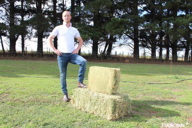 Lucerne round bales A Grade, Eragrostis 1,2m round bales
