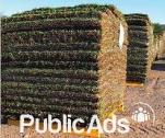 Top quality Instant lawns