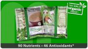 Organic Moringa Oleifera Nutri-Pap Shakes