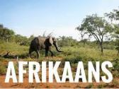 Afrikaans taal aan te leer