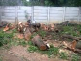 Tree felling, rubble removal