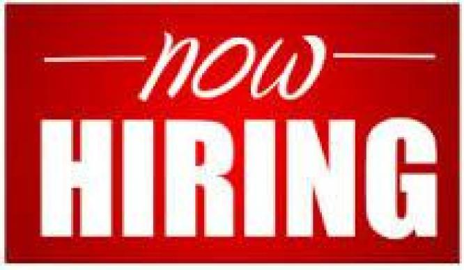 Cleaners required in offices and hotels