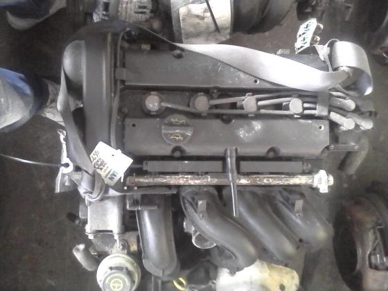 Ford Focus/ Fiesta 1.6 (HWDA) Engine for Sale
