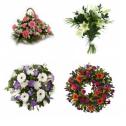 Best Floral Arrangements | Floral Abundance