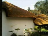 fire Proofing Thatches