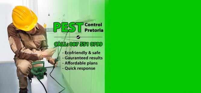 Pretoria Pest Control in Pretoria-Tshwane, Gauteng