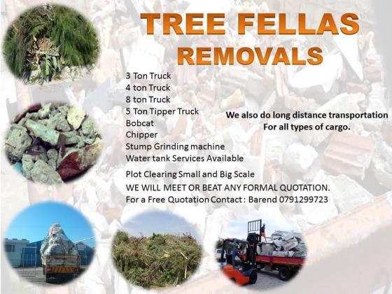 Tree Fellas Services in Port Elizabeth, Eastern Cape