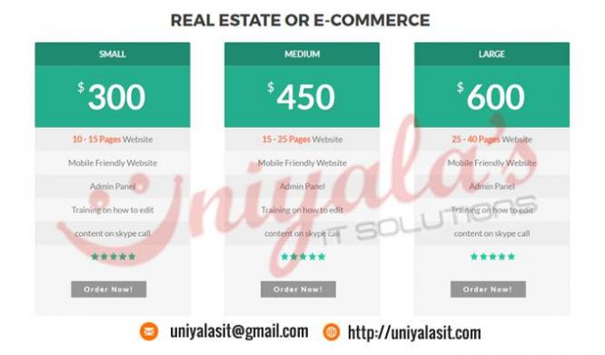 Finest Web Development Company