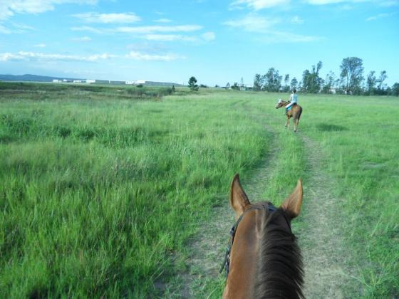 STABLE AVAILABLE @ SMALL, PRIVATE, SEMI-COMPETITIVE YARD in Newcastle KZN in Drakensberg, KwaZulu-Natal