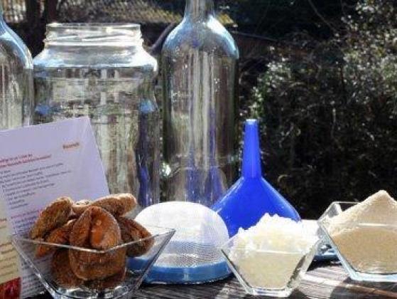 Comeplete DIY kits for Water kefir, Milk kefir and Kombucha   R 400.00