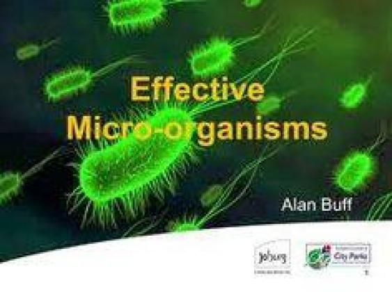EM1 Microorganisms for soil   R 150.00 for 1 L including recipe to make own again