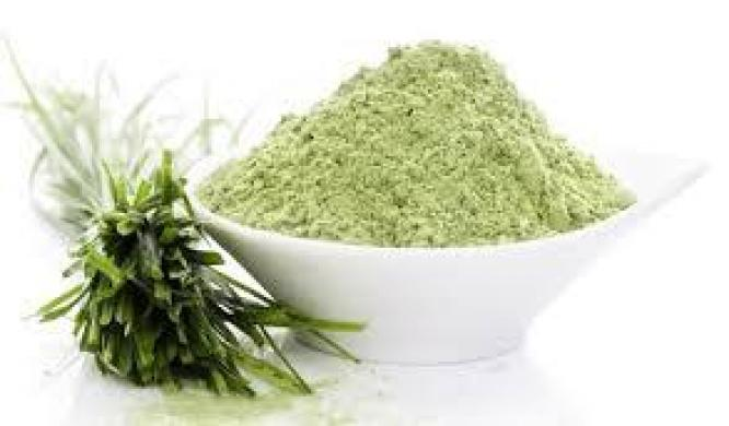 Hemp + Moringa + Wheatgrass powder in 1   R 185.00   200g