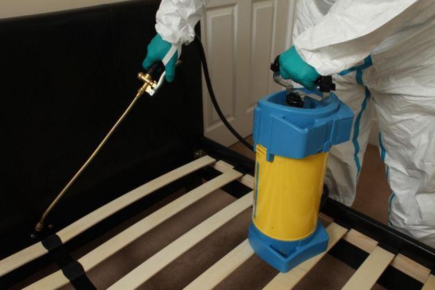 Professional Pest Control Services