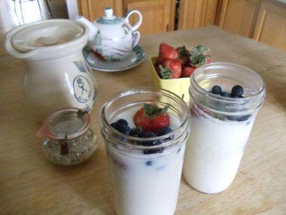 Water kefir, Milk kefir, Kombucha and Tempeh  R 160.00