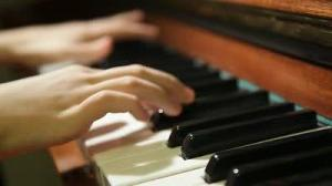 Piano/Music Theory lessons by European educated tutor,over 25 years experience.