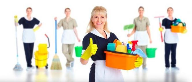 Cleaners / Cleaning Teams