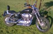 Harley Davidson XL 1200 Custom and Davis Trailer Cheetah 12 for sale