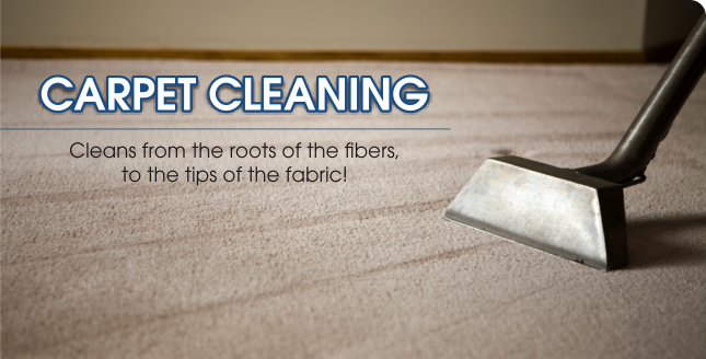 how to clean peutride carpets