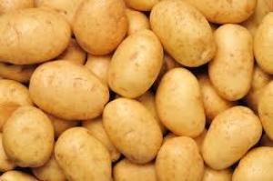 potatos of all types and sizes for sale