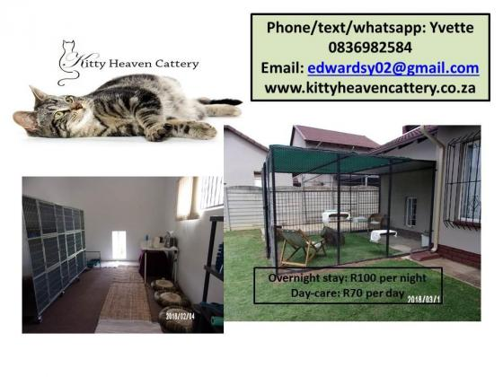 Cattery - overnight boarding and daycare for cats