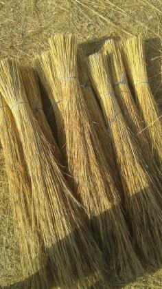 Thatch LAPA GRASS 4SALE