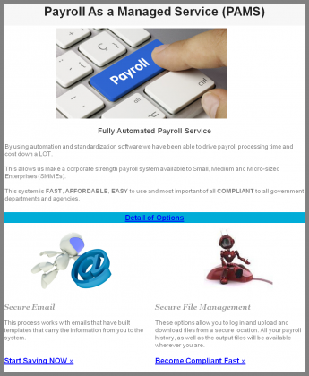 Affordable Automated Payroll Solution
