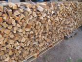 Blue gum firewood/ braai wood sales