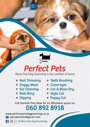 Home Pet Grooming in Cape Town, Western Cape