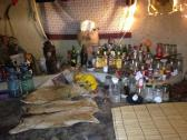 TRADITIONAL HEALER IN SIYABUSWA