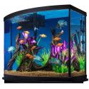 Do u have fish? koi Fish? Aquarium? Need Medication or More Fish ?