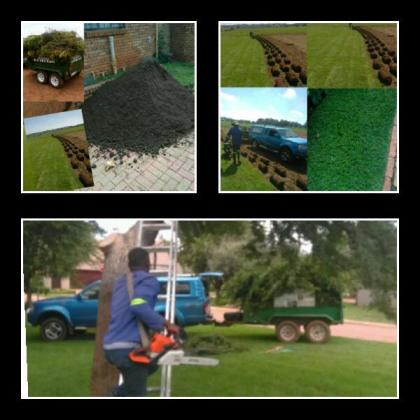 Instant lawn planting and delivering