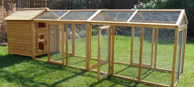 Large And Strong Chicken Coops For Sale
