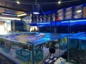 Equiptment for all fresh water and marine aquariums