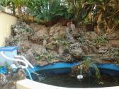Koi fish ponds and pools - We build new waterfall