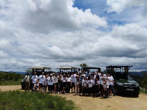 Belfast Tours and Safaris