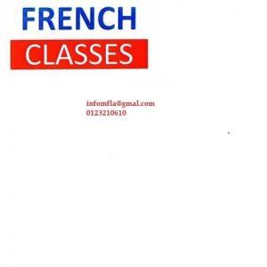 PROFESSIONAL FRENCH  LANGUA...