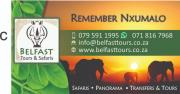 Belfast Tours and Safaris