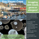 Eco Slayer Cape Town - Pest Control, Bird Control, Pathogen & Odour Control Experts