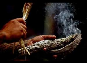 TRADITIONAL HERBALIST HEALER