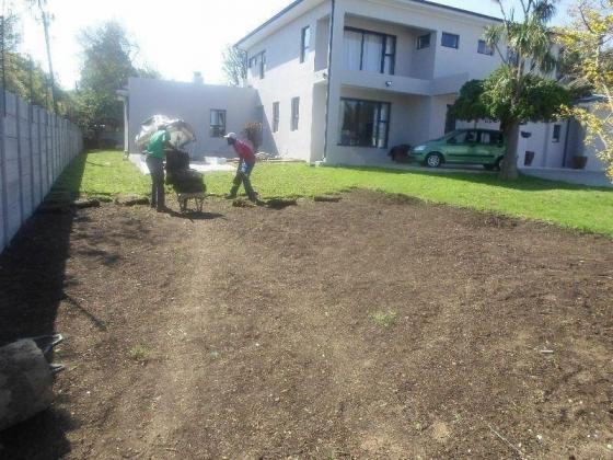 landscape and gardening, lawn dressing