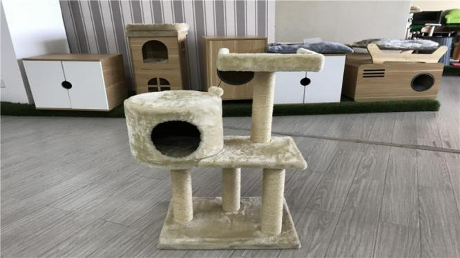 Large Cat Condo For New Cat Tree And Main Coon Cat Tree . in Witbank, Mpumalanga